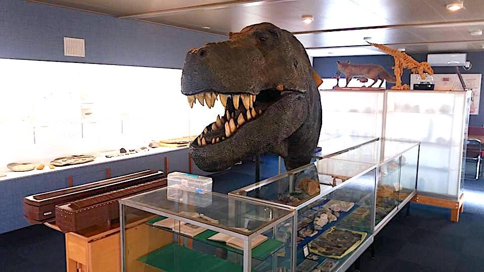 化石展示館